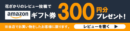Amazonギフト券を 300円分プレゼント!